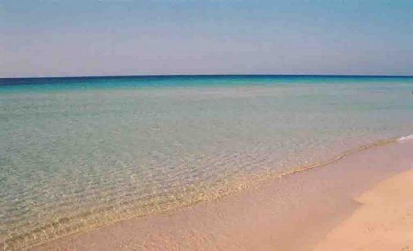 Foto 2: Lunga distesa di sabbia finissima e mare cristallino a 50 mt dalla casa vacanza