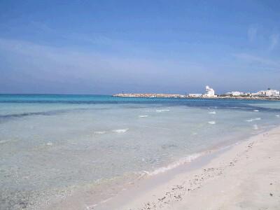 Foto 11: Spiaggia Torre San Giovanni