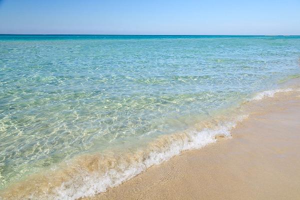 Foto 17: spiaggia