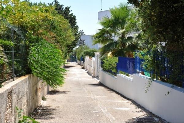 Appartamenti al centro di porto cesareo for Appartamenti al centro di barcellona