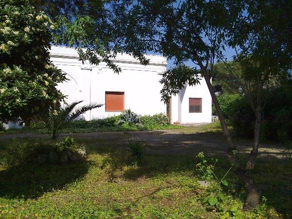 Felline casa vacanza in affitto con ampio giardino salento - Case in affitto con giardino ...