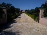 Casa vacanza Salento a 2Km dal mare e 8km da Gallipoli - Visualizza foto e altri dettagli.