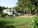 Appartamenti a Gallipoli in Puglia. Appartamento immerso nel verde a Gallipoli